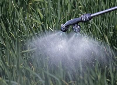agrotoxico-herbicida-glifosato-quimico (Foto: Thinkstock)
