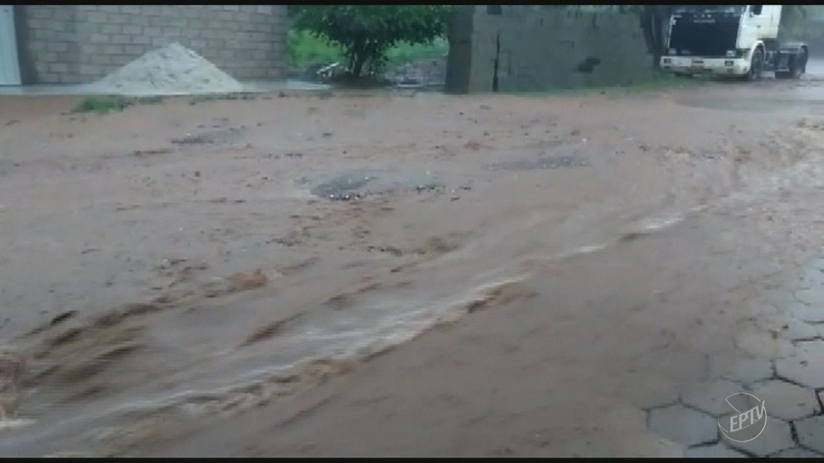 Temporal em Campinas tem ventos de até 95,2 km/h, provoca quedas de árvores e corte de energia para 5,5 mil imóveis