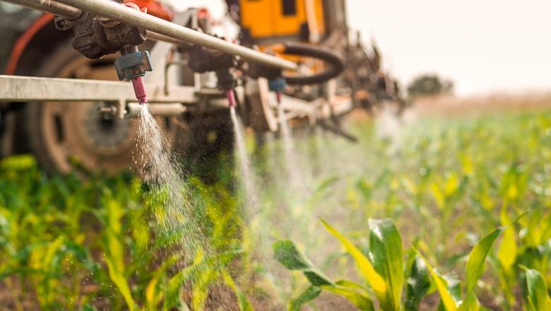 Mudanças no mercado de agrotóxicos podem influenciar em sua legislação (Foto: Getty Images)