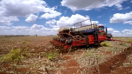 Produtores aceleram plantio de soja