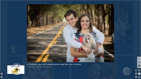 Mania de Cão: Fronteira Notícias recebe fotos de cães