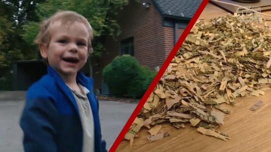Menino de 2 anos põe envelope com mais de US$ 1.000 em triturador de papel nos EUA