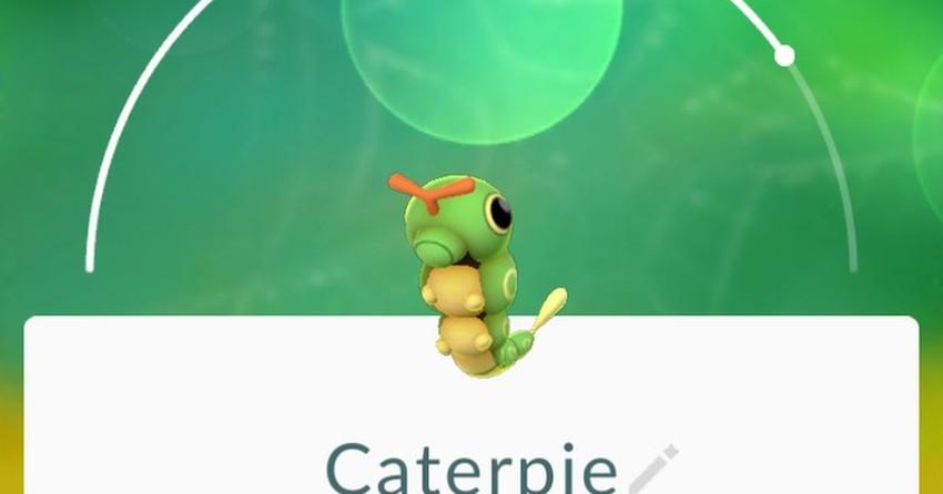 Saiba quais são os Pokémon mais comuns e os mais raros de