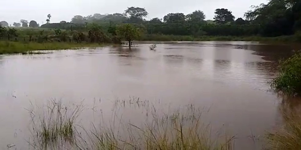 Córrego na zona rural de Aspásia (SP) transbordou — Foto: Arquivo Pessoal