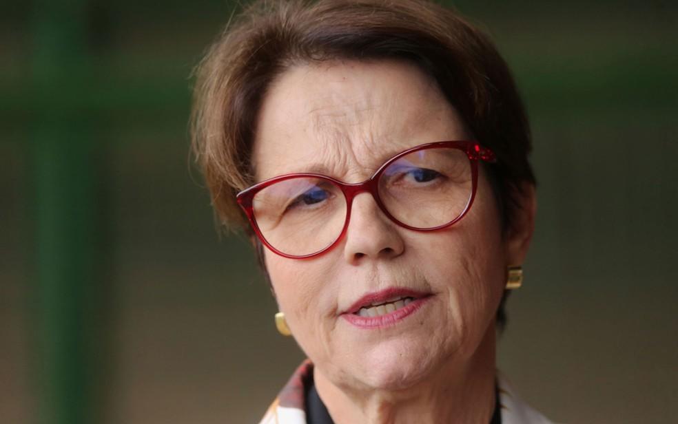 A ministra da Agricultura, Tereza Cristina — Foto: Fátima Meira/Futura Press/Estadão Conteúdo