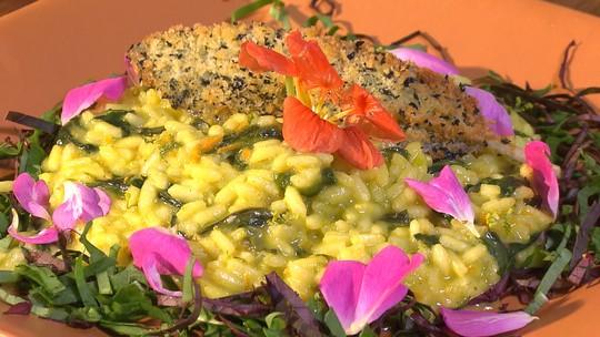 Aprenda receita de risoto de frutos do mato