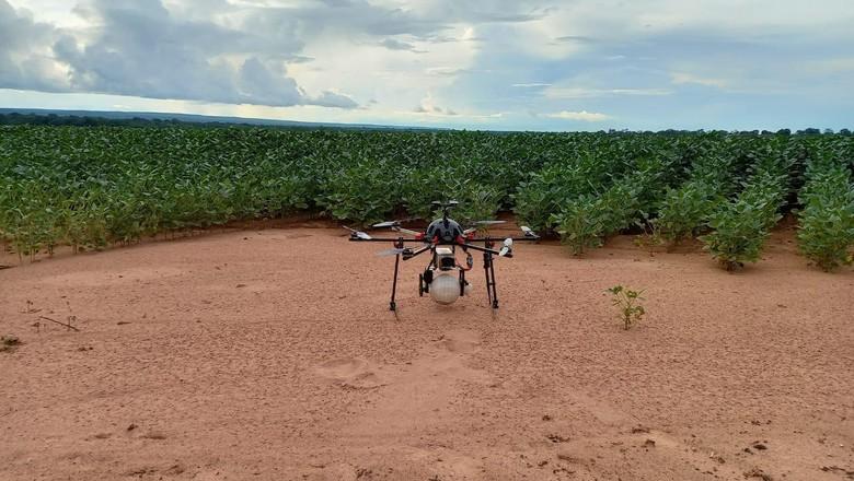 Biológicos-aplicação-drone (Foto: Divulgação/José Lusimar/Amipa)
