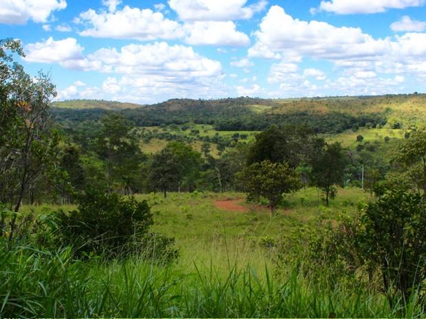 Área em Chapada dos Guimarães foi comprada por ONG internacional. (Foto: ONG Global Sanctuary for Elephants/ Divulgação)