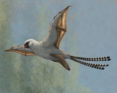Estes dinossauros foram extintos porque tinham asas, mas não sabiam voar