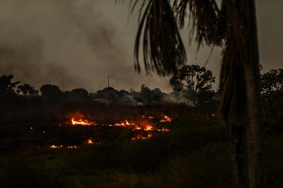 Acre registra 35 focos de queimadas nos primeiros meses deste ano — Foto: Sérgio Vale/Arquivo pessoal