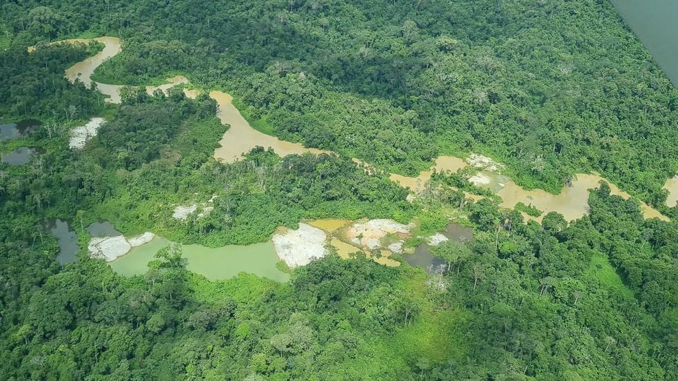 Terra Indígena Yanomami em Roraima— Foto: Juliana Dama/G1