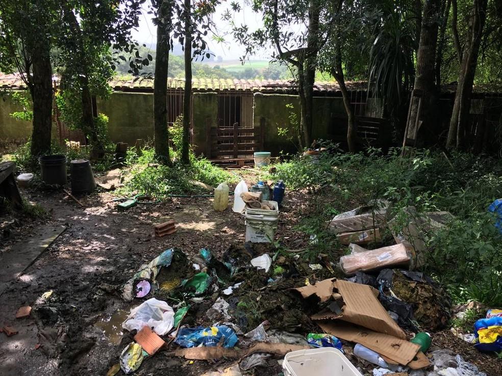 Polícia interdita canil clandestino e prende proprietário por maus-tratos, em São José dos Pinhais — Foto: Polícia Civil do Paraná