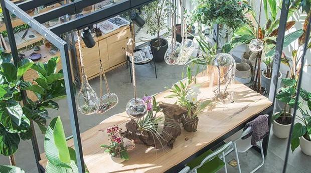 FLO Atelier Botânico, em SP: espaço de 380 metros  quadrados tem café e jardim para descanso (Foto: Divulgação)