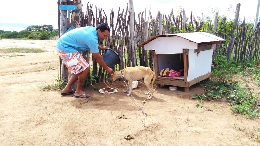 Amor pelos animais fez Edimárcio Pereira vender a casa onde morava para cuidar de cães na zona rural de Monteiro (Foto: Rafaela Gomes/TV Paraíba)