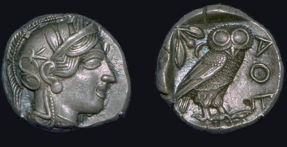 Coruja europeia era animal sagrado da deusa Atenas na mitologia grega; na cultura romana, era o pássaro de Minerva — Foto: Getty Images via BBC