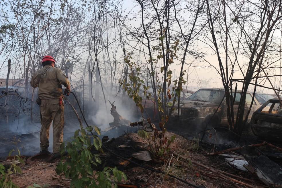 Carros de sucata ficaram destruídos durante incêndio — Foto: Andrê Nascimento/G1 PI