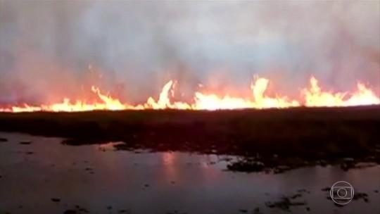 Bolsonaro manda ministérios se mobilizarem para combater incêndios na Amazônia