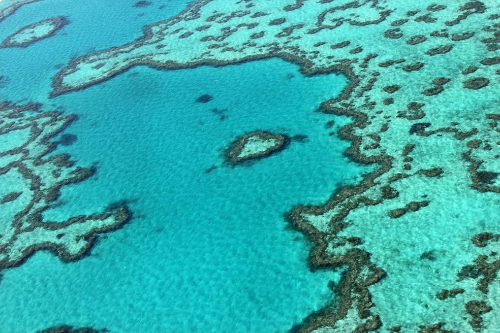 Trecho da Grande Barreira de Corais, na Austrália (Foto: Sarah Lai / AFP)