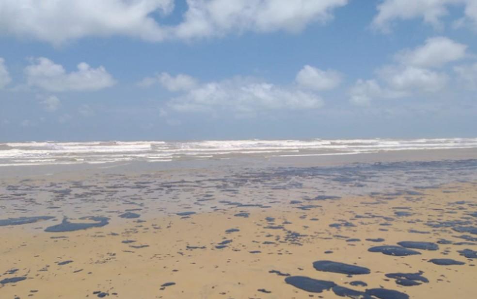 Manchas voltaram a se encontradas na praia de Pirambu — Foto: Adema/SE/Arquivo