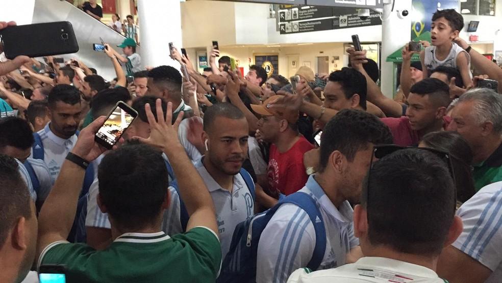 Palmeiras chega a Londrina com muita festa da torcida — Foto: Felipe Zito