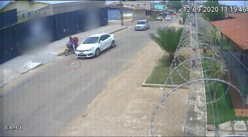 Carro que vinha atrás freou quase em cima do animal que foi jogado na rua no AC — Foto: Reprodução