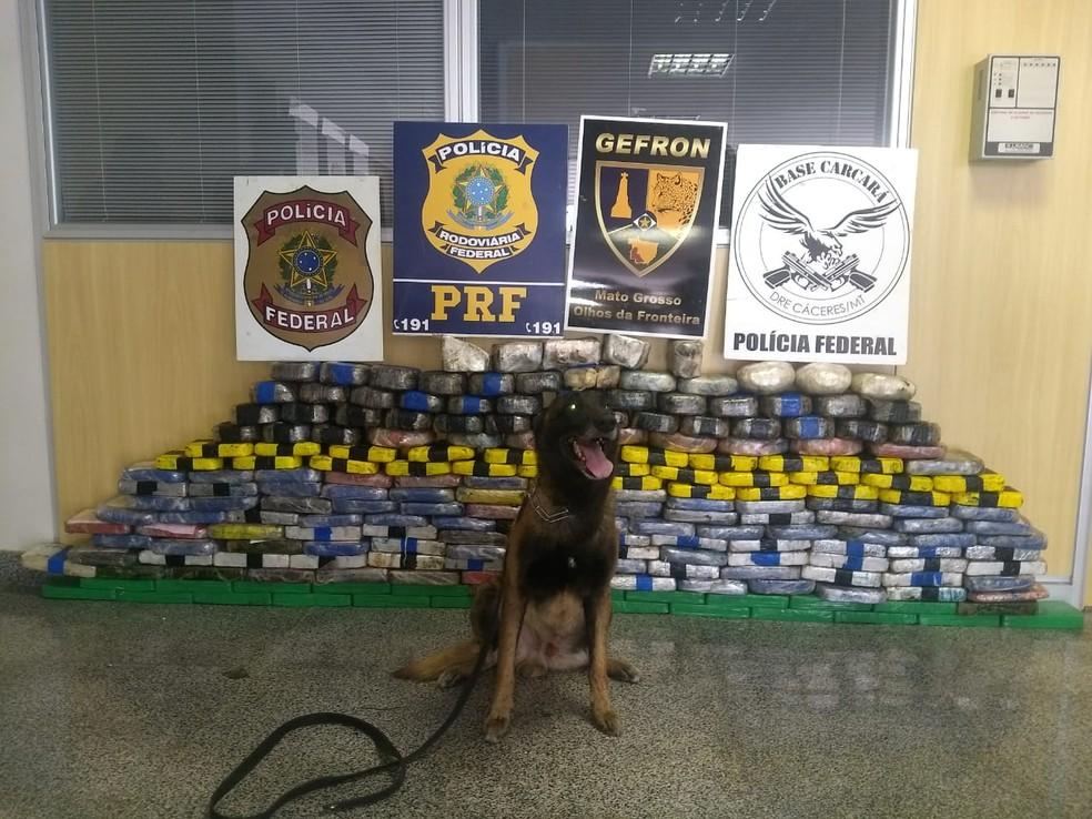 Carga de 200 kg de cocaína foi apreendida em Comodoro — Foto: Gefron/Assessoria
