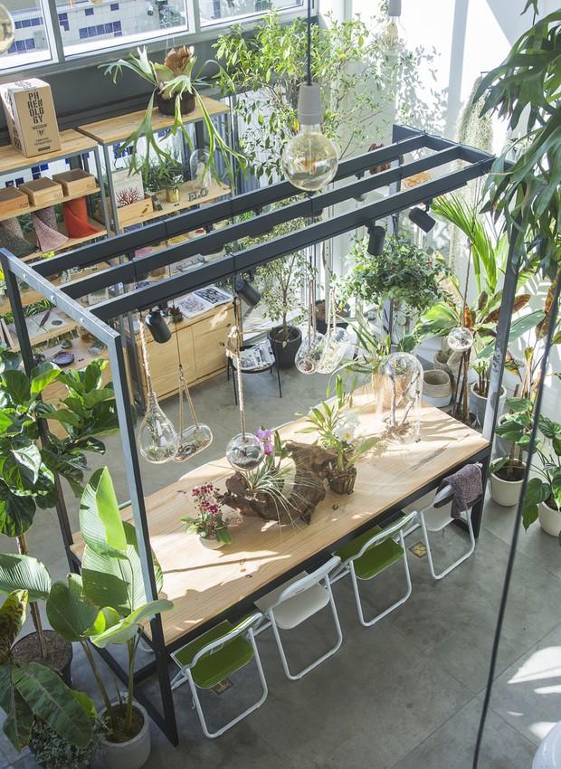 FLO atelier botânico, em São Paulo (Foto: Bruno Geraldi/Divulgação)