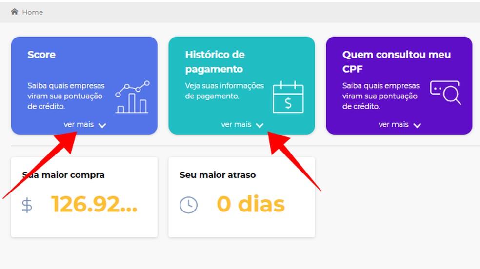 Veja o Score e o histórico de pagamentos do Cadastro Positivo da SPC Brasil — Foto: Reprodução/Paulo Alves