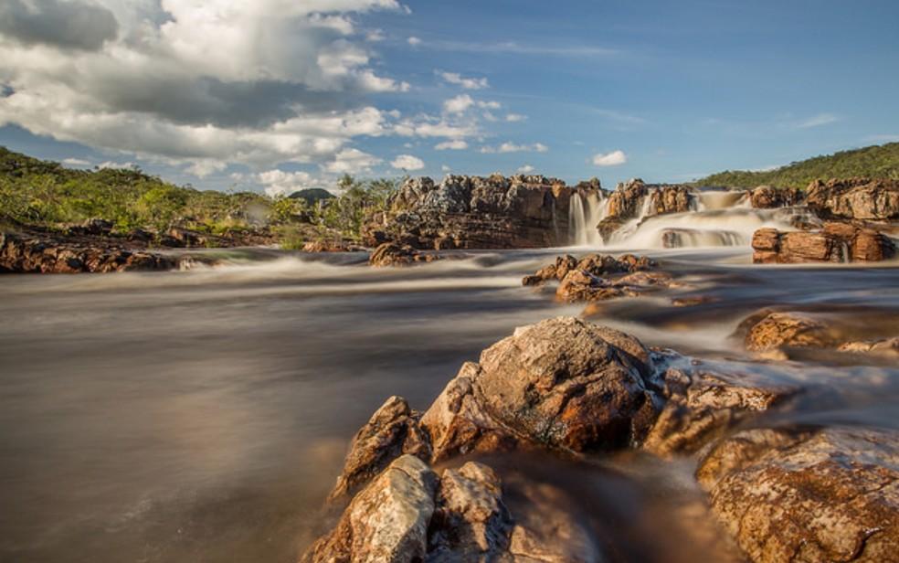 Floresta Nacional de Silvânia — Foto: Reprodução/ICMBio/Fernando Tatagiba