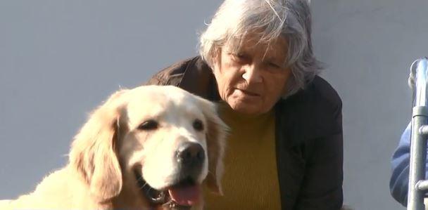Em Xanxerê, idosos recebem visitas semanais de cães da PM - Notícias - Plantão Diário