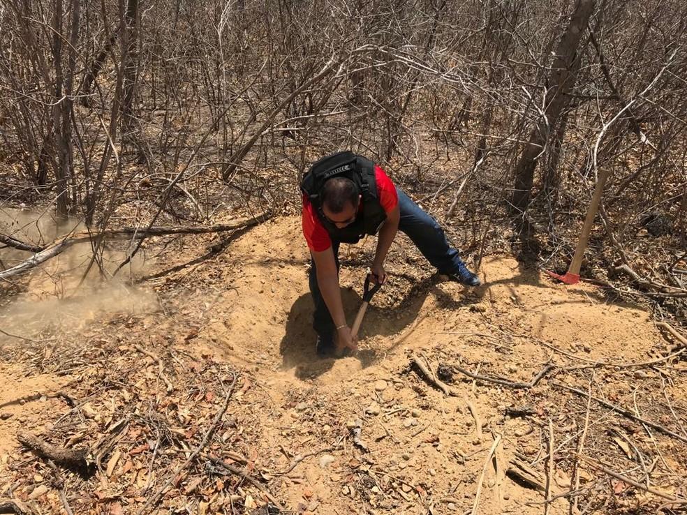 Policiais encontraram 130 quilos de droga no Campo do Amaro, na região Oeste do RN (Foto: Divulgação/Polícia Civil)