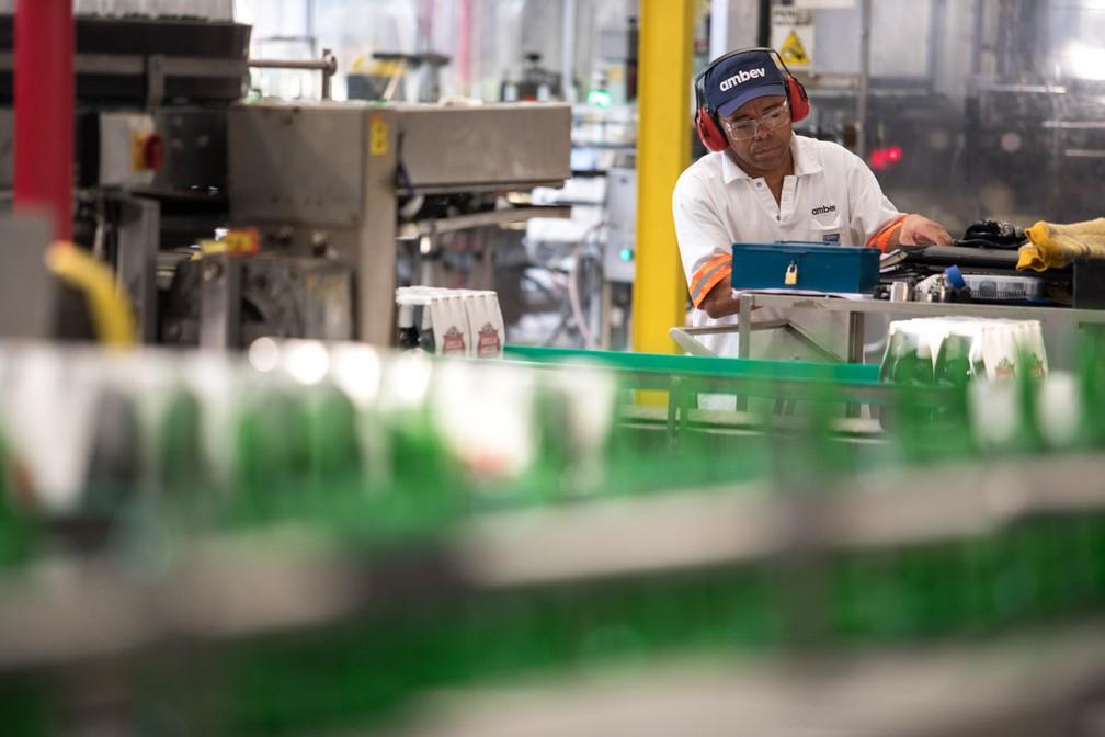 Fábrica da Ambev em Jaguariúna (SP) produz 10 marcas diferentes de cerveja (Foto: Marcelo Brandt/G1)