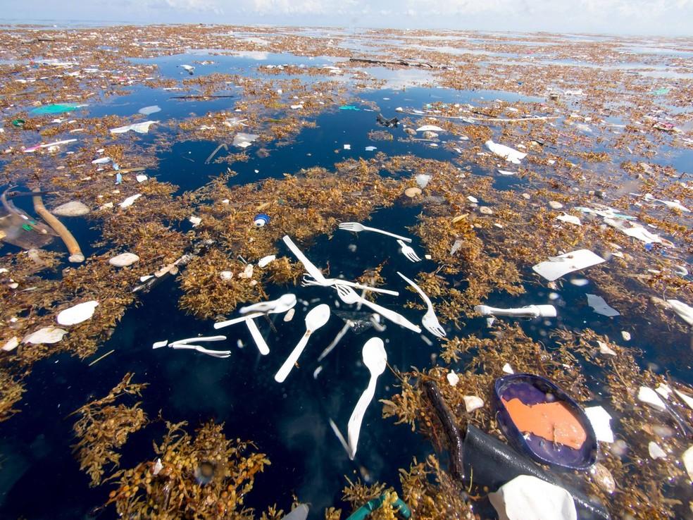 Talheres de plástico flutuam em camada de lixo Camada de lixo entre as costas da Guatemala e de Honduras (Foto: Cortesia de Caroline Power)