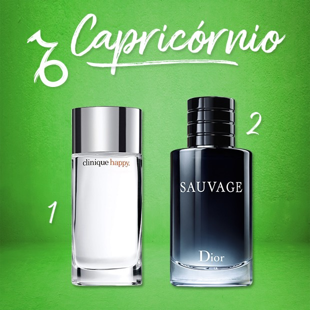 Capricórnio (Foto:  )