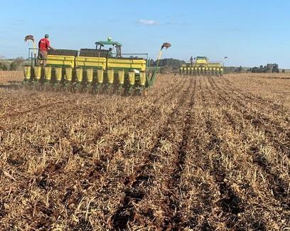 Falta de chuva prejudica plantio da soja e desenvolvimento do milho, Rio Grande do Sul