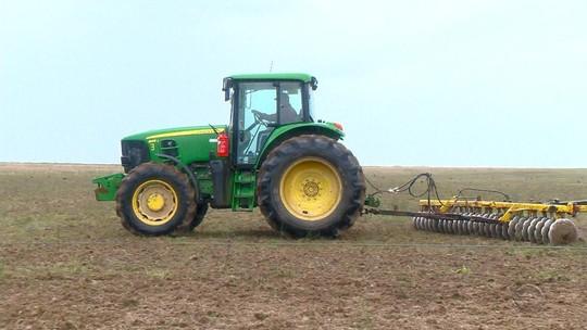 Cadeia produtiva do arroz gera mais de 50 mil empregos diretos no Rio Grande do Sul