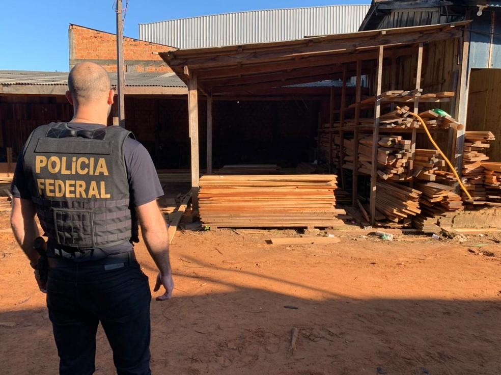 Mais de 20 mandados de busca e apreensão foram cumpridos pela PF na Operação Wood Land em RO — Foto: Polícia Federal/Divulgação