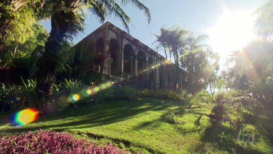 Visitar o Sítio Roberto Burle Marx, em Barra de Guaratiba, é um Programão