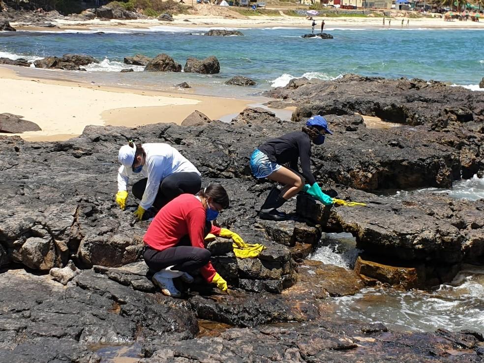 Integrantes do UFPE SOS Mar realizaram ação de limpeza em Itapuama, no Cabo de Santo Agostinho — Foto: Gilberto Rodrigues/Cortesia