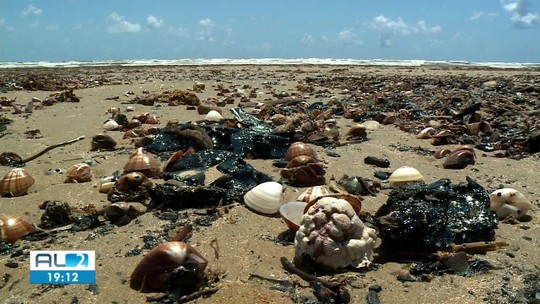 Ibama inclui novo município de AL na lista de locais atingidos por óleo