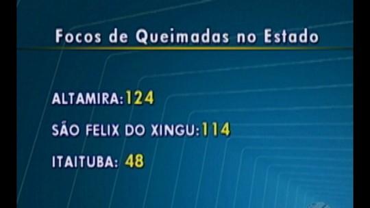 Registros de focos de queimadas no interior do Pará chegam a mais de 400