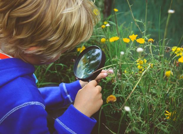 Crie o hábito de olhar atentamente para suas plantinhas - e isso inclui o verso das folhas (Foto: Thinkstock)