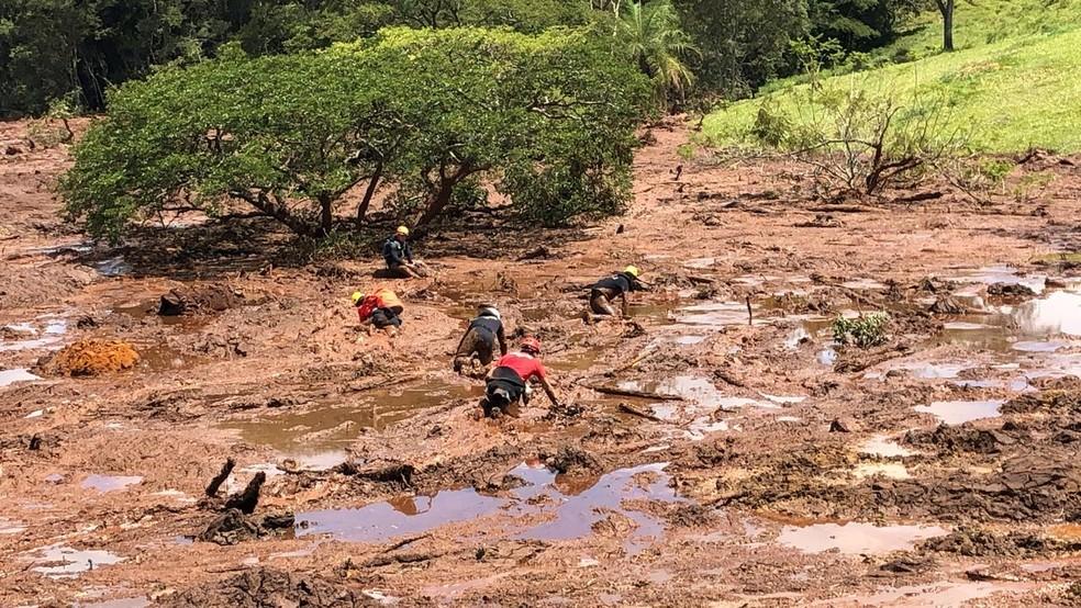 Lama resgate Brumadinho — Foto: Danilo Girundi/Globo