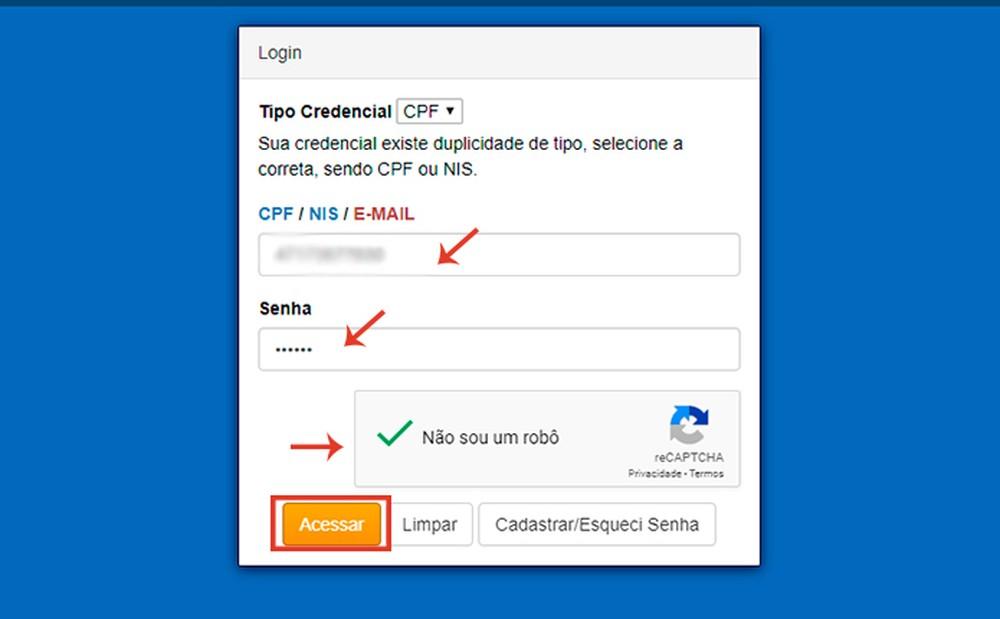 Após realizar o cadastro, o usuário deve fazer o login em sua conta — Foto: Reprodução/Caroline Doms