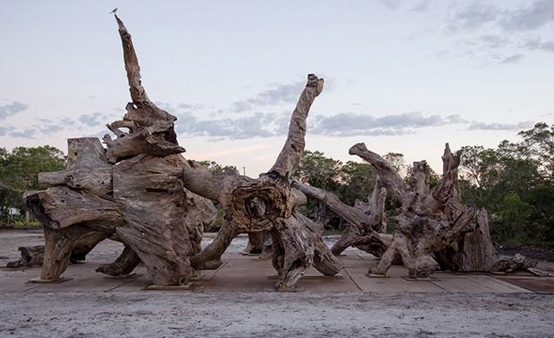 Detalhe de Root Land, feita este ano no Brasil.  (Foto: Divulgação)