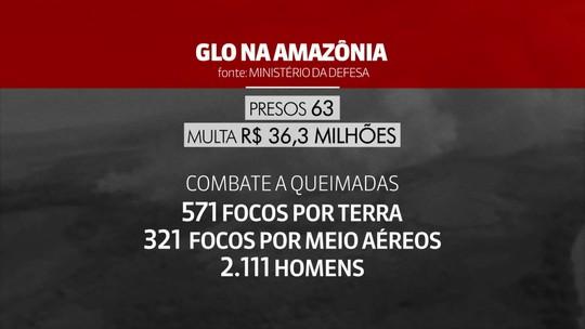 Multas no primeiro mês de ação contra queimadas na Amazônia somam R$ 36 milhões, diz Defesa