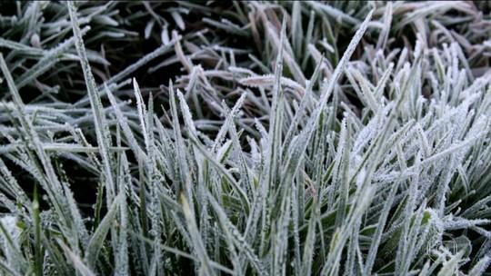 Com -6,7°C em Urupema, SC volta a registrar a menor temperatura do ano