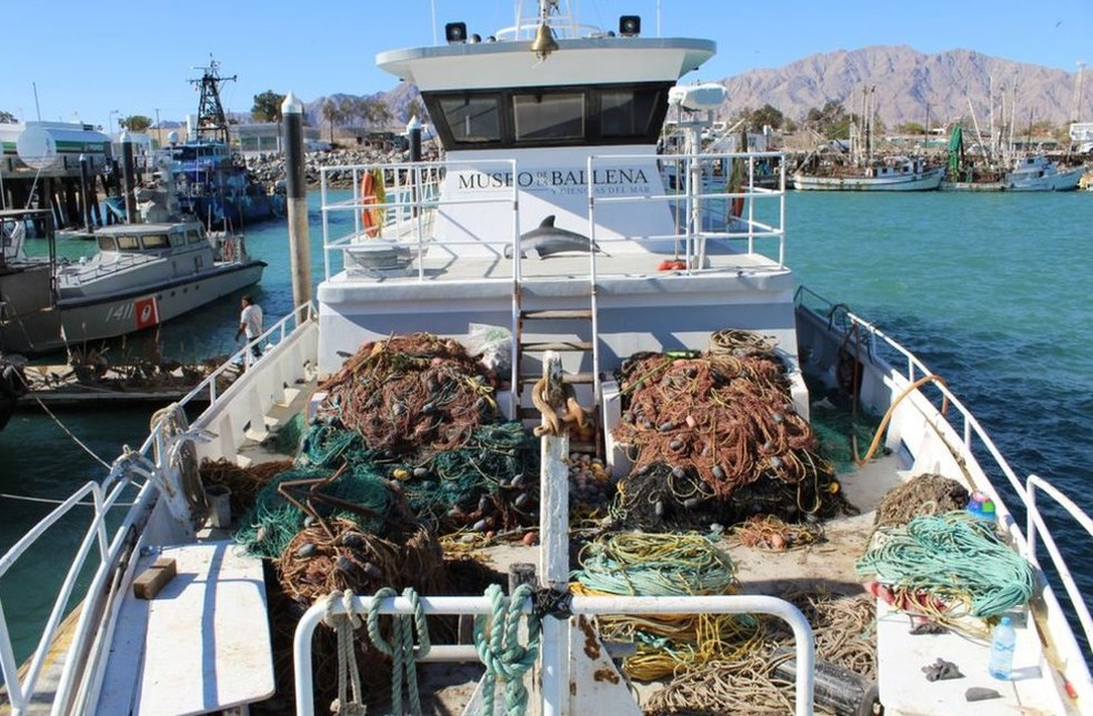 A ONG Museo de la Ballena é uma das entidades que retiram redes de emalhar da área protegida — Foto: BBC