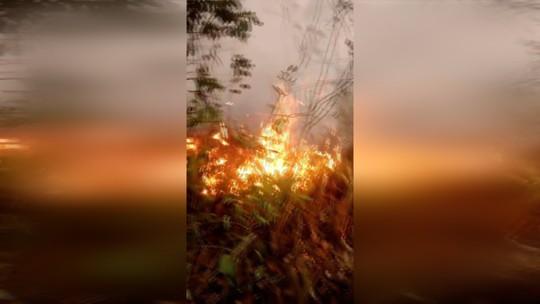 Destruição de restinga por incêndio em Rio das Ostras, RJ, é registrada pela Defesa Civil; vídeo
