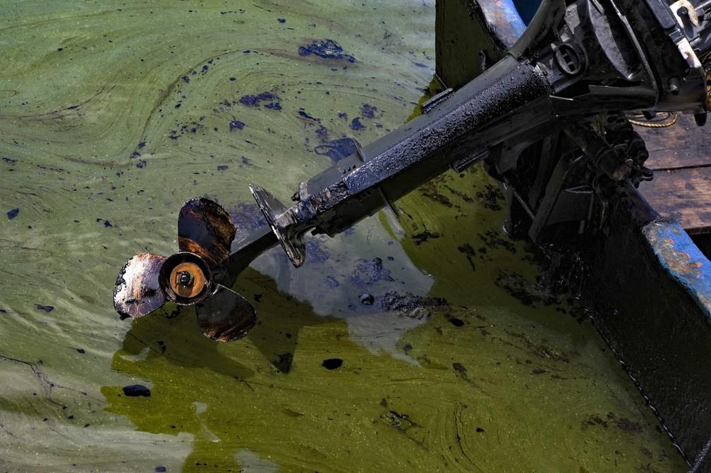 Vazamento de óleo no Lago de Maracaibo, na Venezuela — Foto: Yuri Cortez/AFP
